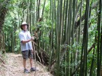 Steve in the bamboo forest